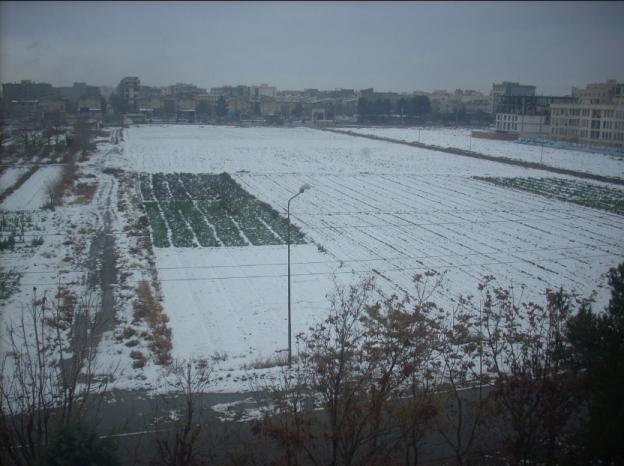 20131206-snowy day