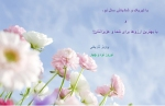 Nowruz94